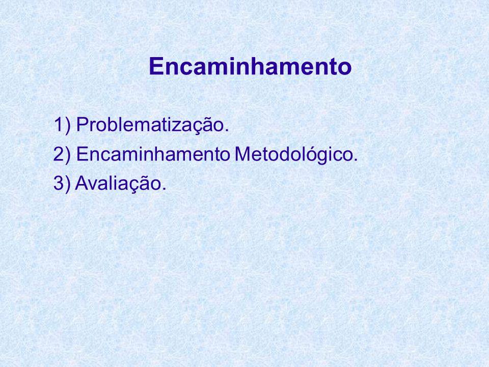 Encaminhamento 1) Problematização. 2) Encaminhamento Metodológico. 3) Avaliação.