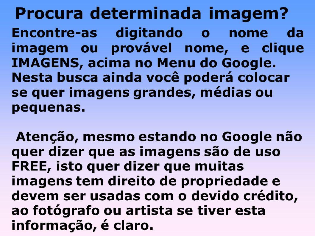Tradutor Google Você pode traduzir textos e páginas da Web em várias línguas, bastando acessar: http://translate.google.com/translate_t?hl=pt.PT Para traduzir textos, basta digitar o texto.