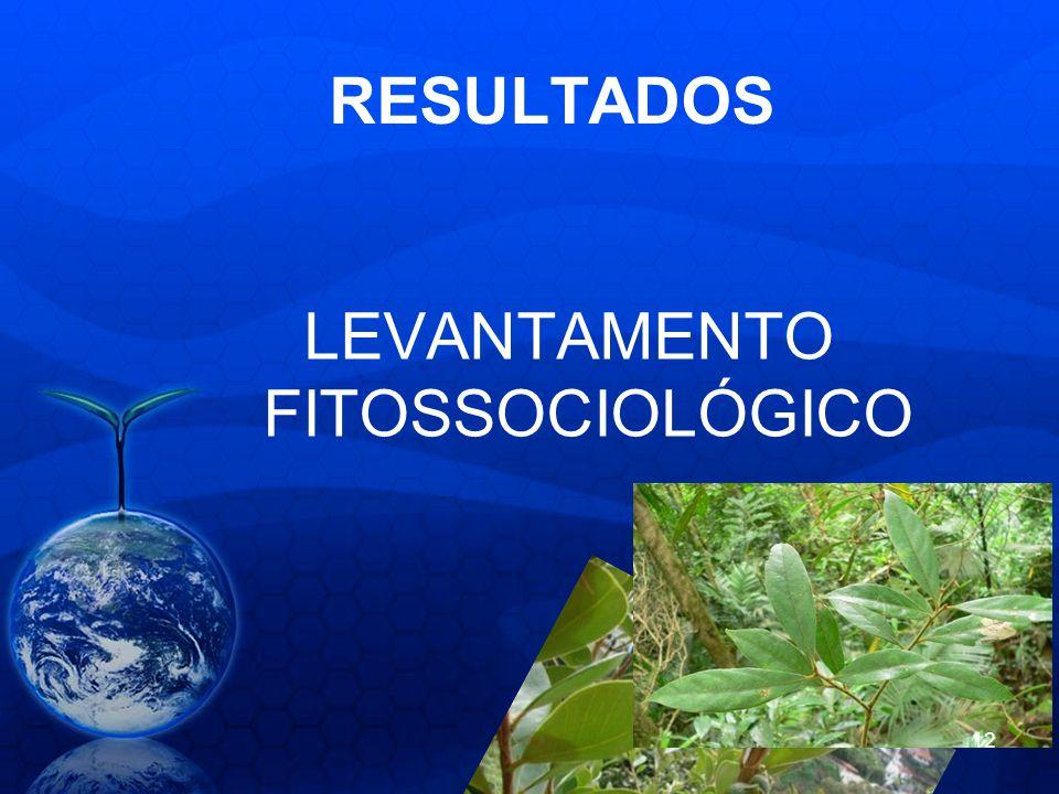 RESULTADOS LEVANTAMENTO FITOSSOCIOLÓGICO 12