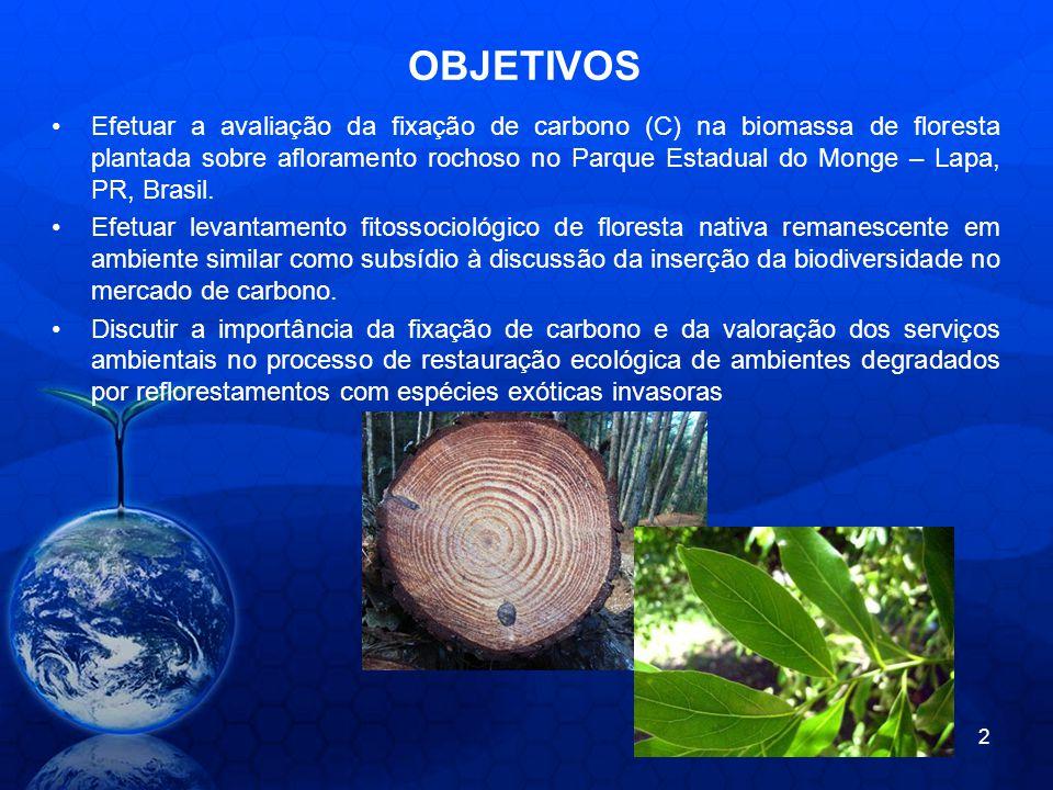 OBJETIVOS Efetuar a avaliação da fixação de carbono (C) na biomassa de floresta plantada sobre afloramento rochoso no Parque Estadual do Monge – Lapa,