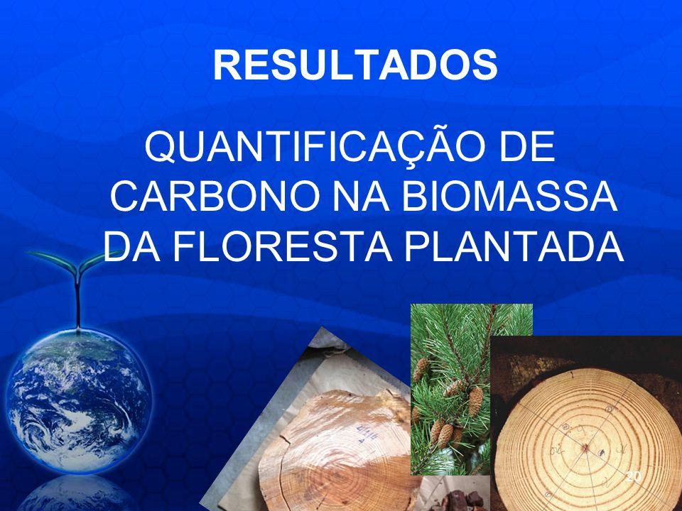 RESULTADOS QUANTIFICAÇÃO DE CARBONO NA BIOMASSA DA FLORESTA PLANTADA 20