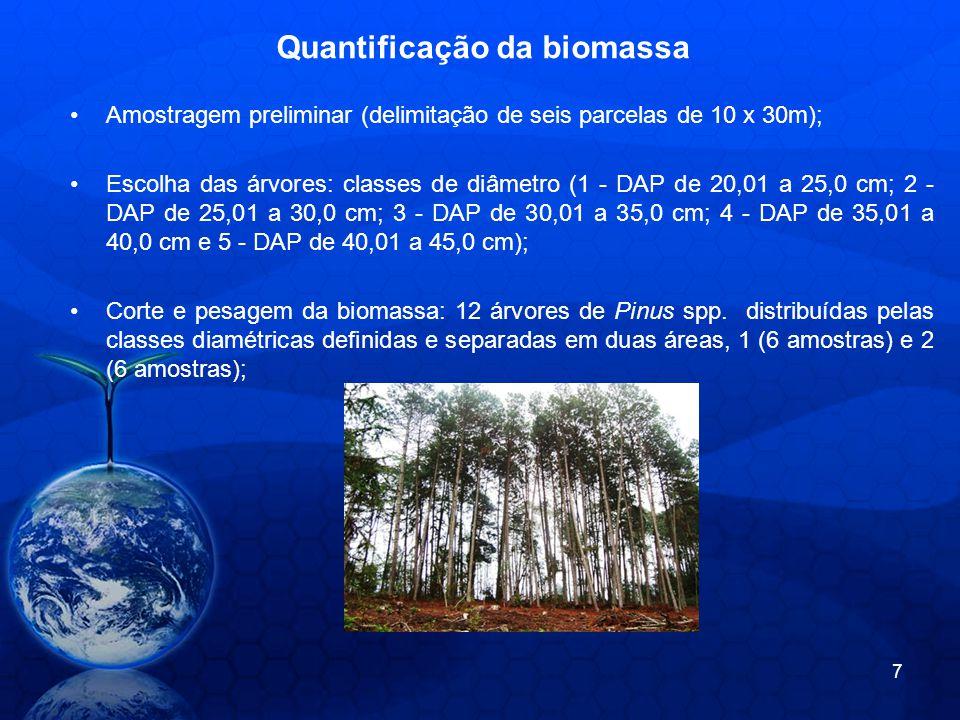 Quantificação da biomassa Amostragem preliminar (delimitação de seis parcelas de 10 x 30m); Escolha das árvores: classes de diâmetro (1 - DAP de 20,01 a 25,0 cm; 2 - DAP de 25,01 a 30,0 cm; 3 - DAP de 30,01 a 35,0 cm; 4 - DAP de 35,01 a 40,0 cm e 5 - DAP de 40,01 a 45,0 cm); Corte e pesagem da biomassa: 12 árvores de Pinus spp.