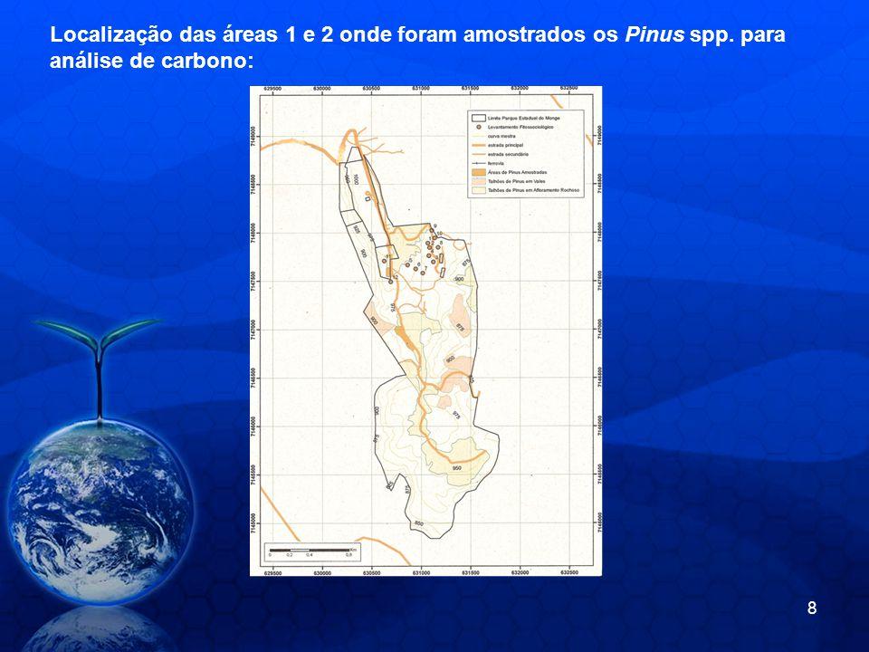 Localização das áreas 1 e 2 onde foram amostrados os Pinus spp. para análise de carbono: 8