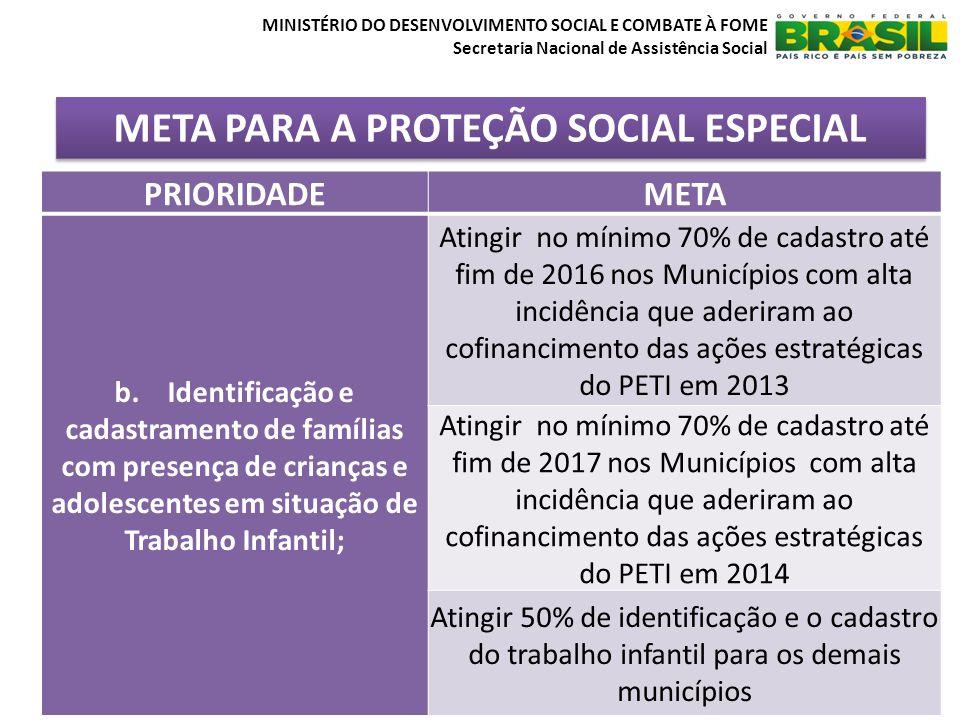 META PARA A PROTEÇÃO SOCIAL ESPECIAL MINISTÉRIO DO DESENVOLVIMENTO SOCIAL E COMBATE À FOME Secretaria Nacional de Assistência Social PRIORIDADEMETA b.