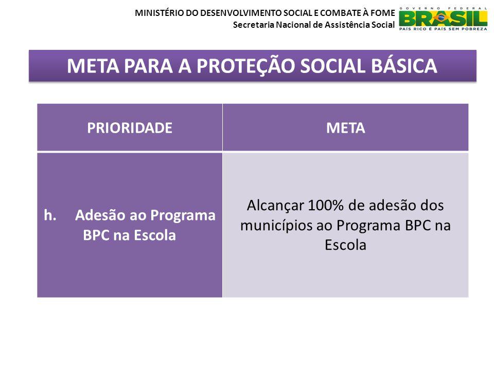META PARA A PROTEÇÃO SOCIAL BÁSICA MINISTÉRIO DO DESENVOLVIMENTO SOCIAL E COMBATE À FOME Secretaria Nacional de Assistência Social PRIORIDADEMETA h. A