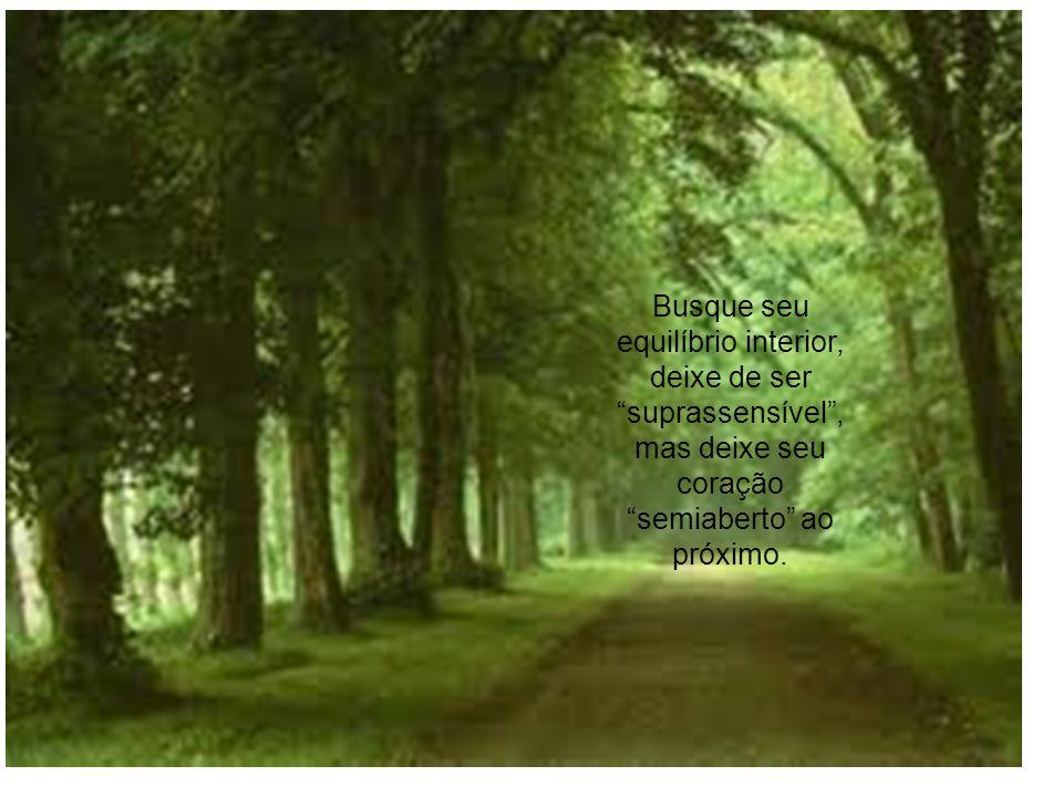 Busque seu equilíbrio interior, deixe de ser suprassensível, mas deixe seu coração semiaberto ao próximo.