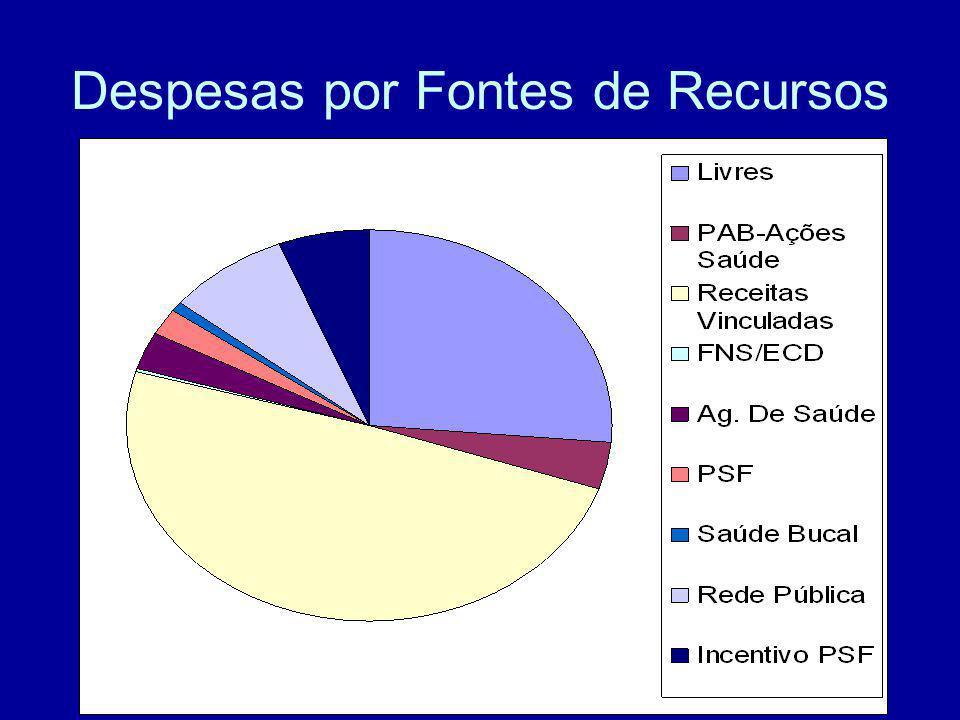 Despesas por Fontes de Recursos