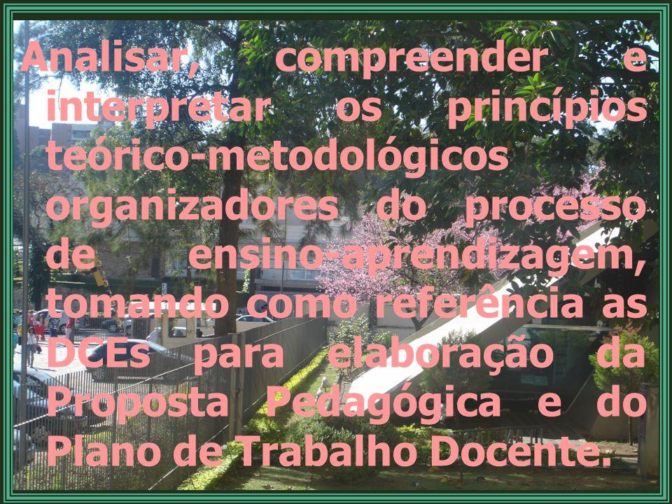 Analisar, compreender e interpretar os princípios teórico-metodológicos organizadores do processo de ensino-aprendizagem, tomando como referência as DCEs para elaboração da Proposta Pedagógica e do Plano de Trabalho Docente.