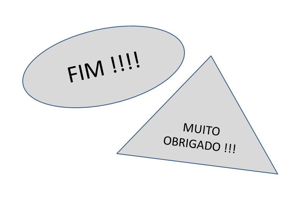 FIM !!!! MUITO OBRIGADO !!!