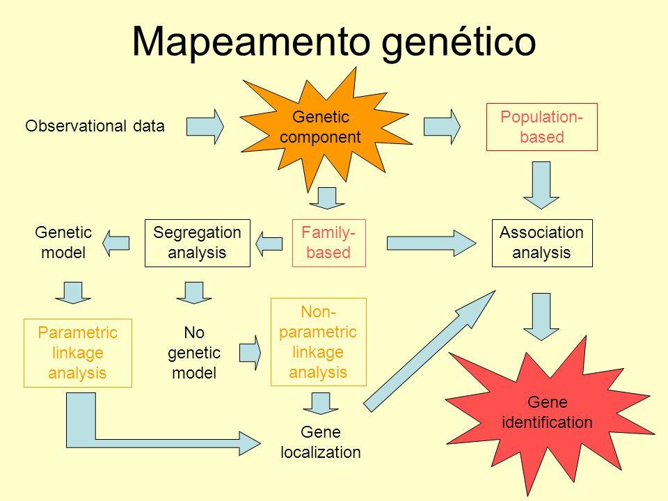 Mapeamento genético Genetic component Population- based Family- based Segregation analysis Genetic model No genetic model Parametric linkage analysis
