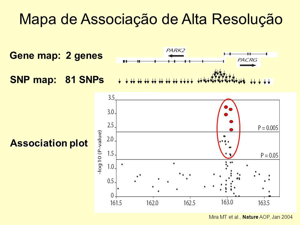 Mapa de Associação de Alta Resolução 2 genesGene map: 81 SNPsSNP map: Association plot Mira MT et al., Nature AOP, Jan 2004