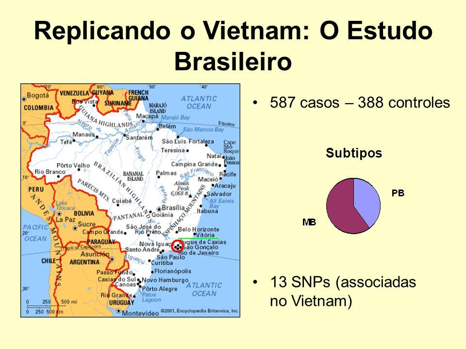 Replicando o Vietnam: O Estudo Brasileiro 587 casos – 388 controles Subtipos 13 SNPs (associadas no Vietnam)