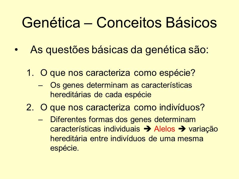 As questões básicas da genética são: 1.O que nos caracteriza como espécie? –Os genes determinam as características hereditárias de cada espécie 2.O qu
