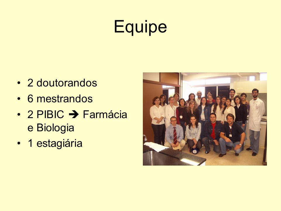 Equipe 2 doutorandos 6 mestrandos 2 PIBIC Farmácia e Biologia 1 estagiária