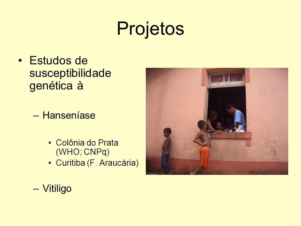 Projetos Estudos de susceptibilidade genética à –Hanseníase Colônia do Prata (WHO; CNPq) Curitiba (F. Araucária) –Vitiligo