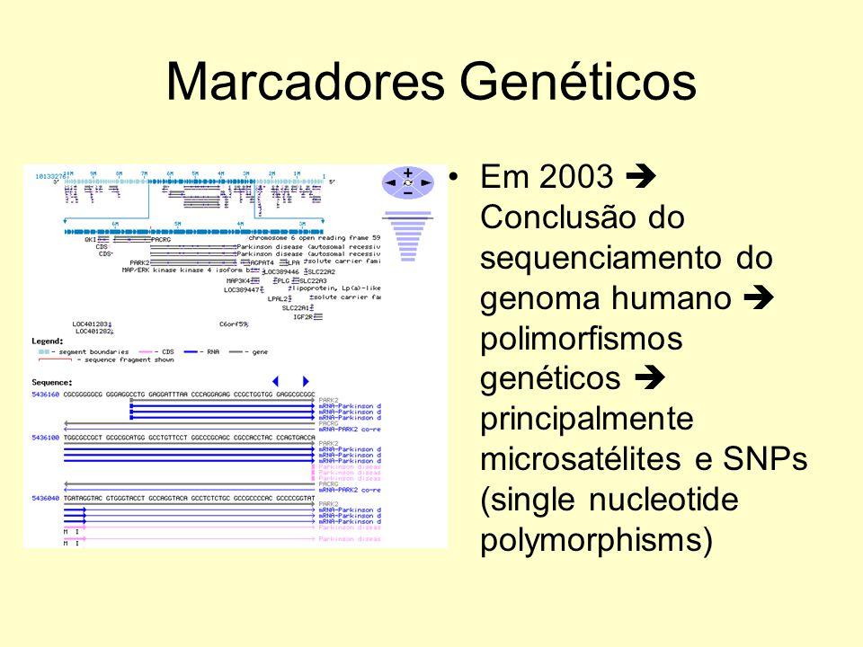 Marcadores Genéticos Em 2003 Conclusão do sequenciamento do genoma humano polimorfismos genéticos principalmente microsatélites e SNPs (single nucleotide polymorphisms)