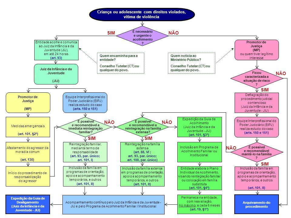 NÃO Permanece na entidade Programa de Acolhimento Guia de Acolhimento Programas de orientação Família extensa.