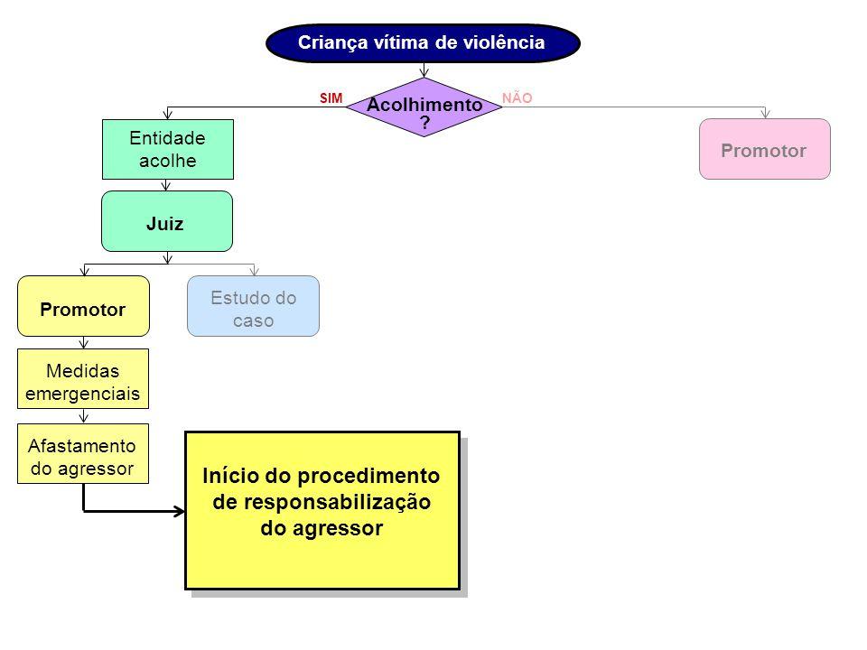 SIM Programas de orientação NÃO Reintegração familiar.