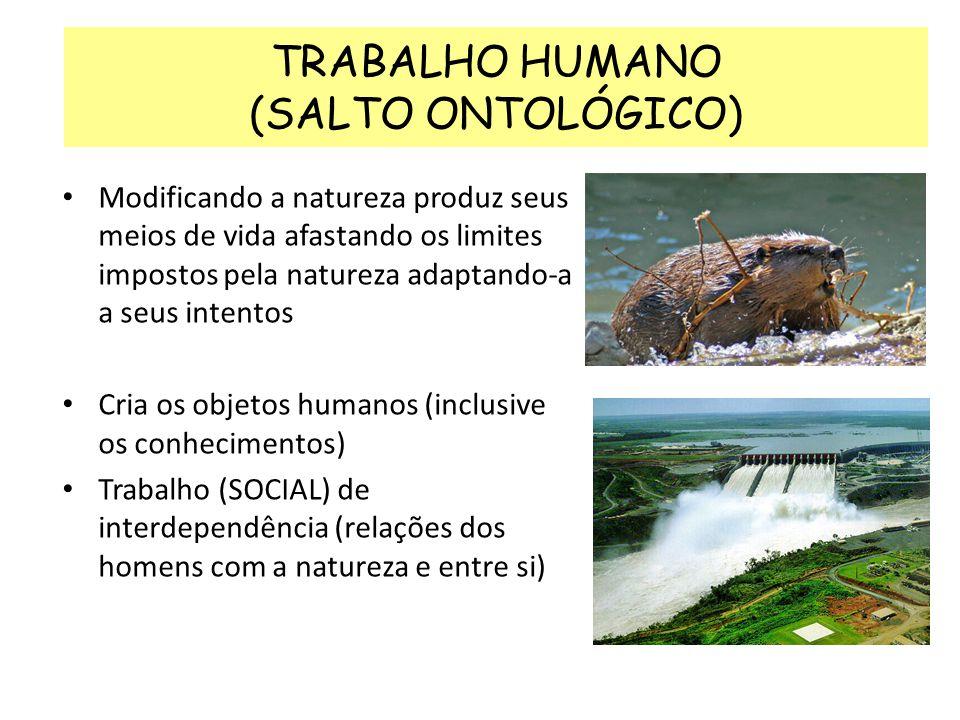 TRABALHO HUMANO (SALTO ONTOLÓGICO) Modificando a natureza produz seus meios de vida afastando os limites impostos pela natureza adaptando-a a seus int