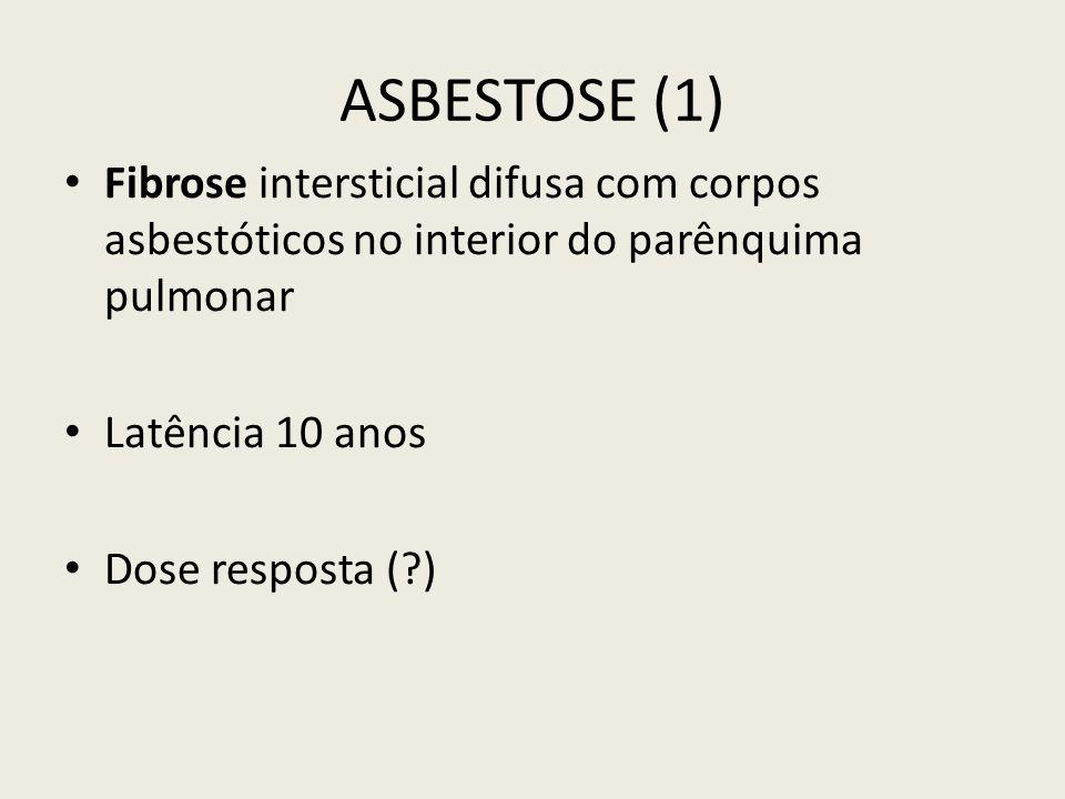 ASBESTOSE (1) Fibrose intersticial difusa com corpos asbestóticos no interior do parênquima pulmonar Latência 10 anos Dose resposta (?)