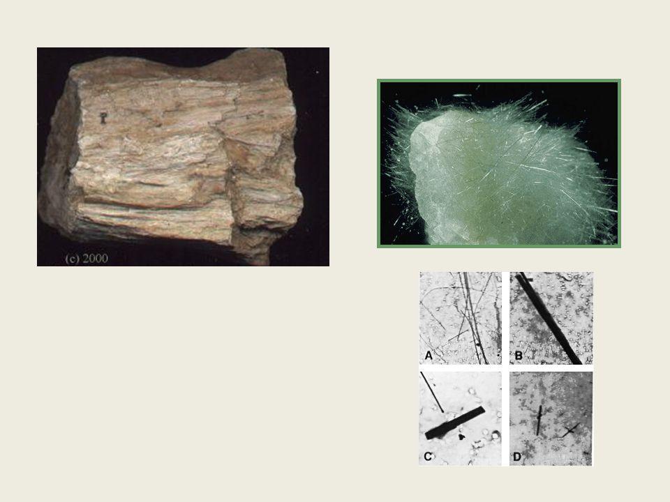 Amianto - Asbesto Origem dos nomes (latino e grego): Relação com suas principais características físico-químicas, incorruptível e incombustível