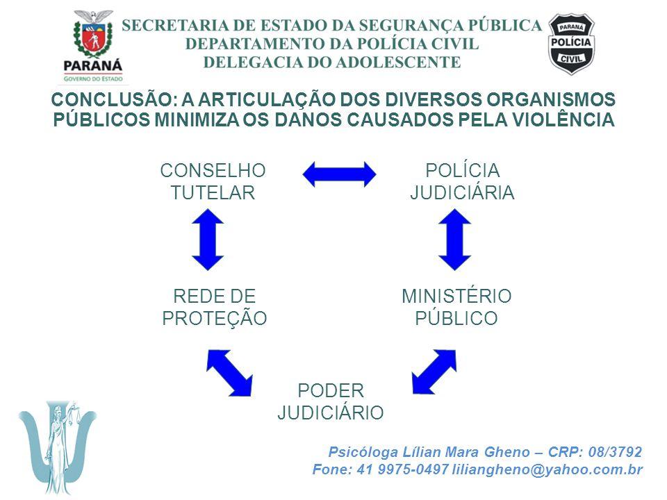 SECRETARIA DE ESTADO DA SEGURANÇA PÚBLICA DEPARTAMENTO DA POLÍCIA CIVIL DELEGACIA DO ADOLESCENTE CONCLUSÃO: A ARTICULAÇÃO DOS DIVERSOS ORGANISMOS PÚBL