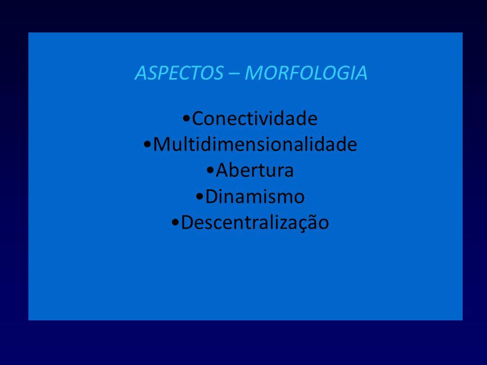 Conectividade Multidimensionalidade Abertura Dinamismo Descentralização ASPECTOS – MORFOLOGIA