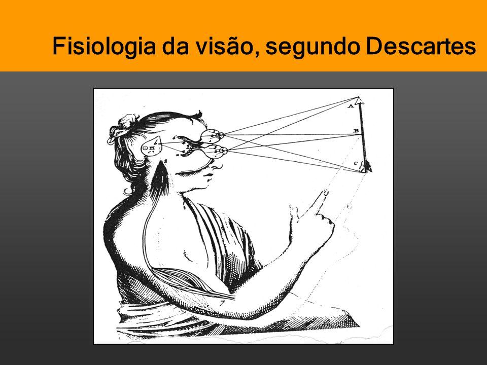 Pensar Azul Texto Editores Fisiologia da visão, segundo Descartes