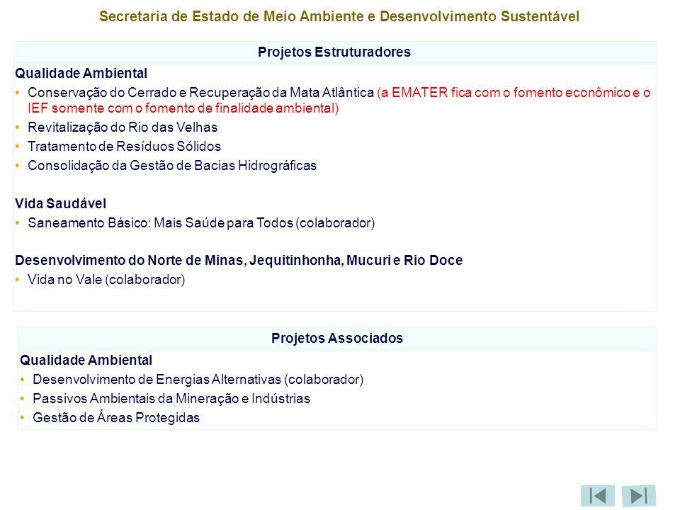 Secretaria de Estado de Meio Ambiente e Desenvolvimento Sustentável Projetos Estruturadores Qualidade Ambiental Conservação do Cerrado e Recuperação da Mata Atlântica (a EMATER fica com o fomento econômico e o IEF somente com o fomento de finalidade ambiental) Revitalização do Rio das Velhas Tratamento de Resíduos Sólidos Consolidação da Gestão de Bacias Hidrográficas Vida Saudável Saneamento Básico: Mais Saúde para Todos (colaborador) Desenvolvimento do Norte de Minas, Jequitinhonha, Mucuri e Rio Doce Vida no Vale (colaborador) Projetos Associados Qualidade Ambiental Desenvolvimento de Energias Alternativas (colaborador) Passivos Ambientais da Mineração e Indústrias Gestão de Áreas Protegidas