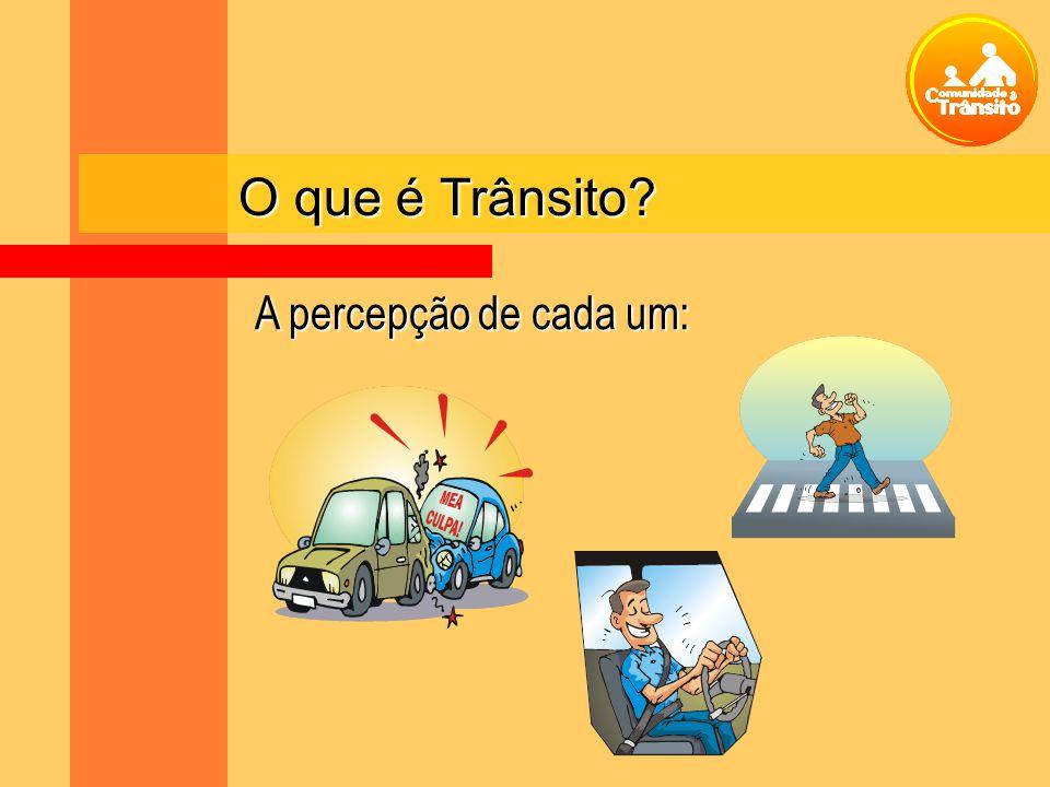 O que é Trânsito? A percepção de cada um: