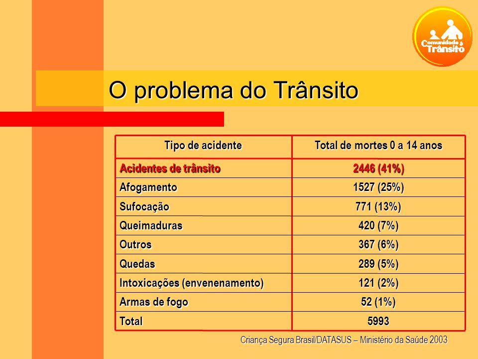 O problema do Trânsito 5993Total 52 (1%) Armas de fogo 121 (2%) Intoxicações (envenenamento) 289 (5%) Quedas 367 (6%) Outros 420 (7%) Queimaduras 771