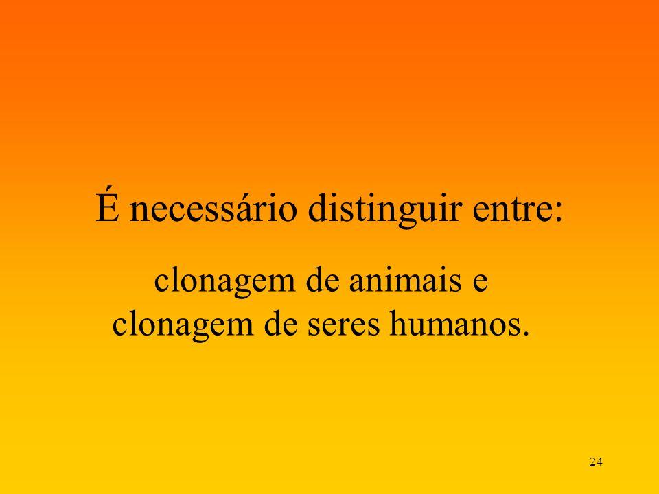 24 É necessário distinguir entre: clonagem de animais e clonagem de seres humanos.