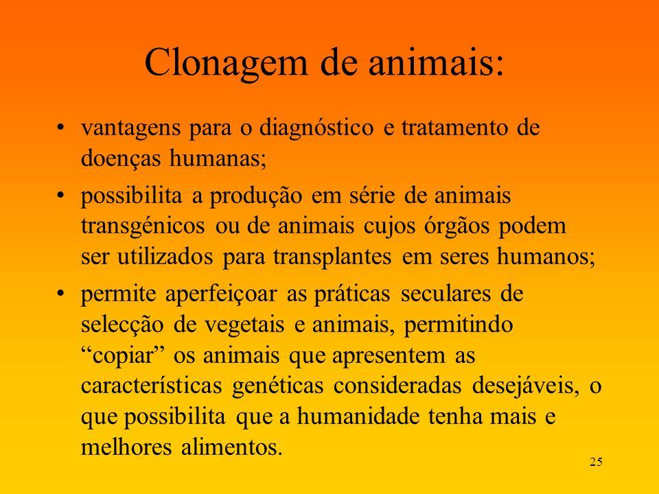 25 Clonagem de animais: vantagens para o diagnóstico e tratamento de doenças humanas; possibilita a produção em série de animais transgénicos ou de an