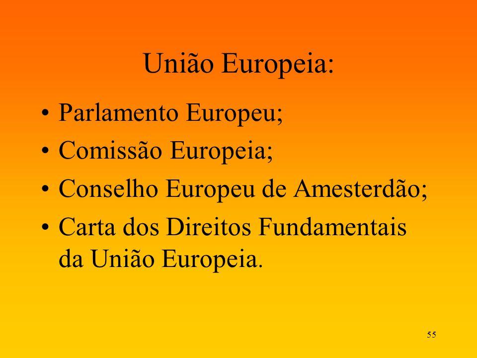 55 União Europeia: Parlamento Europeu; Comissão Europeia; Conselho Europeu de Amesterdão; Carta dos Direitos Fundamentais da União Europeia.