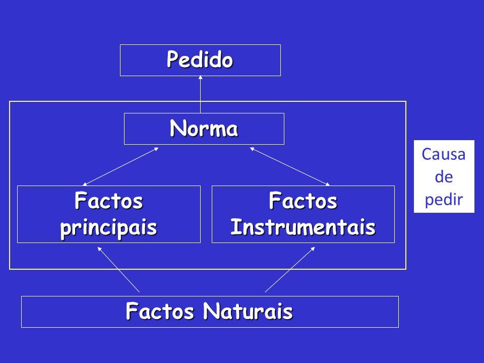 Pedido Norma Factos principais Factos Instrumentais Factos Naturais Causa de pedir