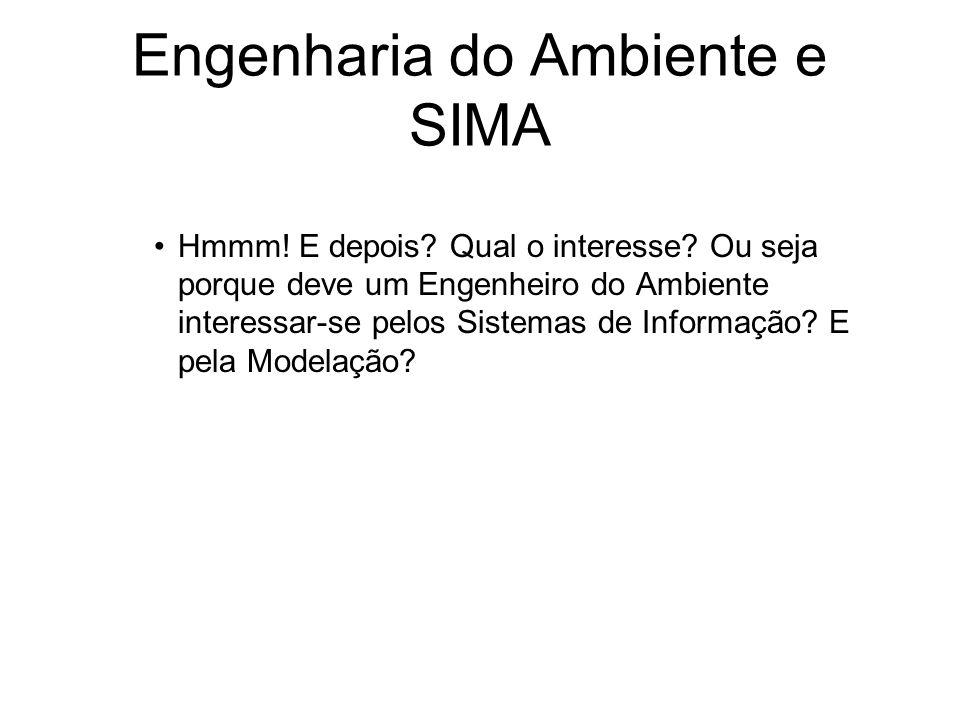 Engenharia do Ambiente e SIMA Hmmm! E depois? Qual o interesse? Ou seja porque deve um Engenheiro do Ambiente interessar-se pelos Sistemas de Informaç