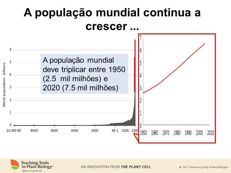 A população mundial continua a crescer... A população mundial deve triplicar entre 1950 (2.5 mil milhões) e 2020 (7.5 mil milhões)