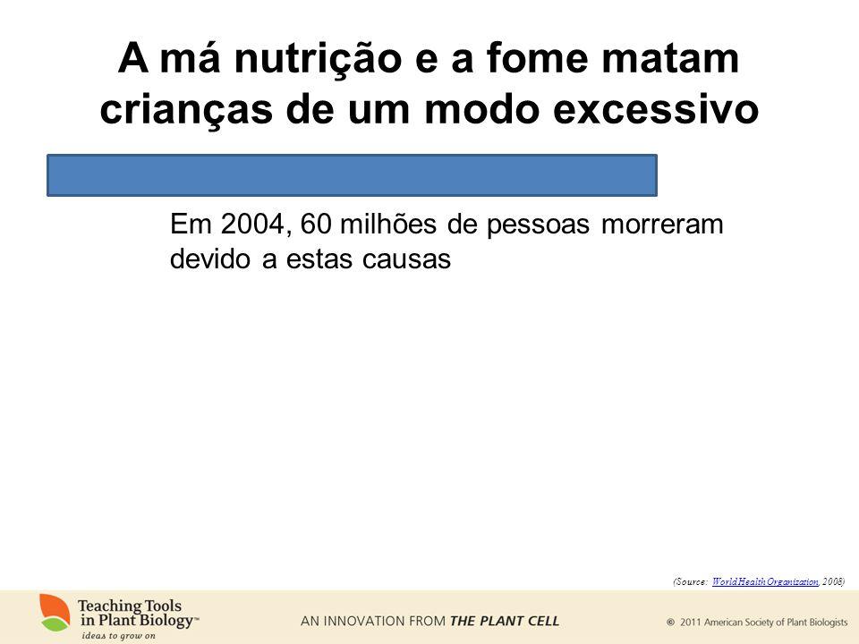 A má nutrição e a fome matam crianças de um modo excessivo Em 2004, 60 milhões de pessoas morreram devido a estas causas (Source: World Health Organization, 2008)World Health Organization