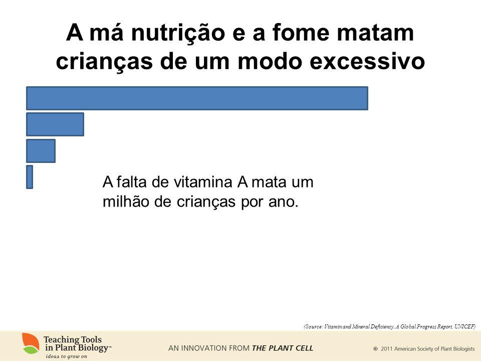 A falta de vitamina A mata um milhão de crianças por ano. (Source: Vitamin and Mineral Deficiency, A Global Progress Report, UNICEF) A má nutrição e a