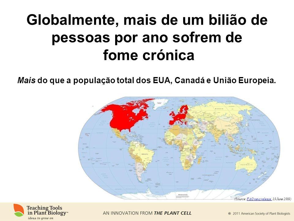 Globalmente, mais de um bilião de pessoas por ano sofrem de fome crónica Mais do que a população total dos EUA, Canadá e União Europeia. (Source: FAO