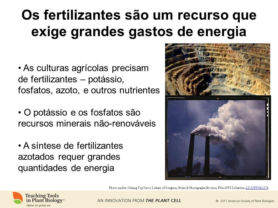 Os fertilizantes são um recurso que exige grandes gastos de energia As culturas agrícolas precisam de fertilizantes – potássio, fosfatos, azoto, e outros nutrientes O potássio e os fosfatos são recursos minerais não-renováveis A síntese de fertilizantes azotados requer grandes quantidades de energia Photo credits: Mining Top News; Library of Congress, Prints & Photographs Division, FSA-OWI Collection, LC-USW361-374LC-USW361-374