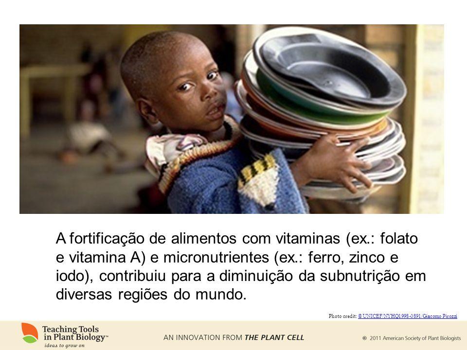 A fortificação de alimentos com vitaminas (ex.: folato e vitamina A) e micronutrientes (ex.: ferro, zinco e iodo), contribuiu para a diminuição da subnutrição em diversas regiões do mundo.