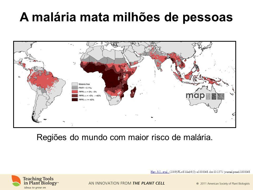 A malária mata milhões de pessoas Regiões do mundo com maior risco de malária. Hay, S.I., et al., Hay, S.I., et al., (2009) PLoS Med 6(3): e1000048. d