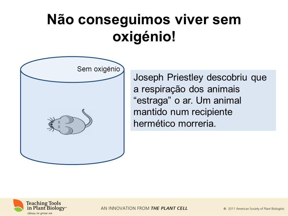 Não conseguimos viver sem oxigénio! X X Sem oxigénio Joseph Priestley descobriu que a respiração dos animais estraga o ar. Um animal mantido num recip