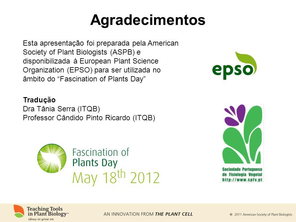 Agradecimentos Tradução Dra Tânia Serra (ITQB) Professor Cândido Pinto Ricardo (ITQB) Esta apresentação foi preparada pela American Society of Plant B