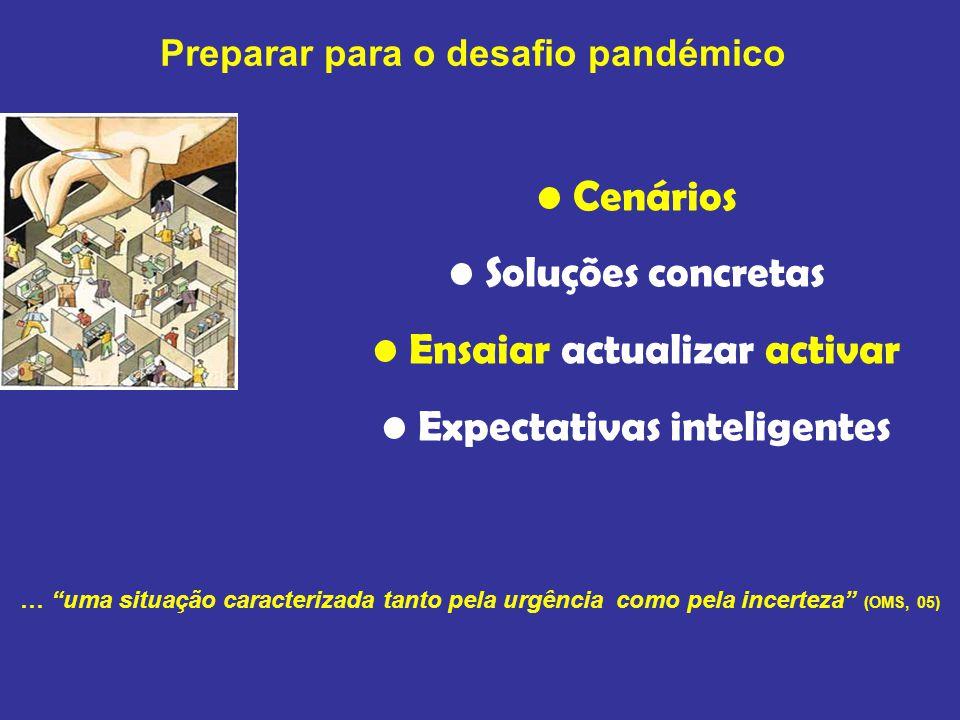 … uma situação caracterizada tanto pela urgência como pela incerteza (OMS, 05) Preparar para o desafio pandémico Cenários Soluções concretas Ensaiar actualizar activar Expectativas inteligentes