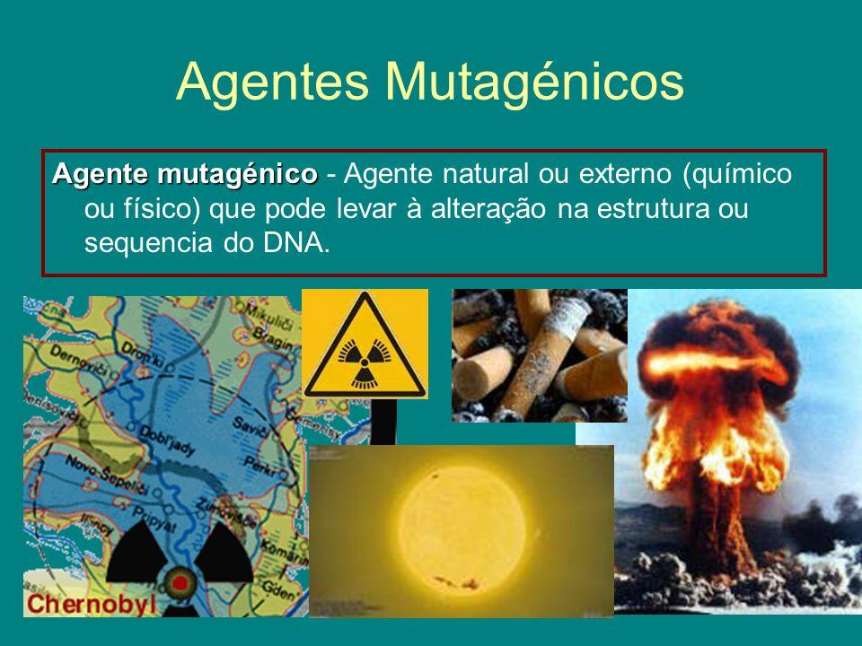 Agentes Mutagénicos Agente mutagénico Agente mutagénico - Agente natural ou externo (químico ou físico) que pode levar à alteração na estrutura ou sequencia do DNA.