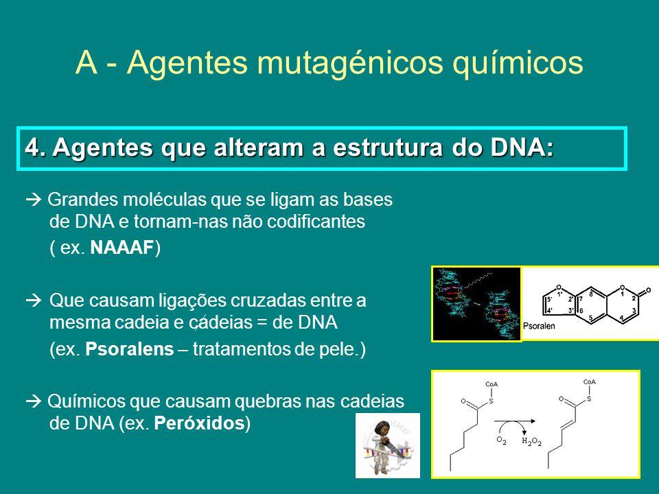 A - Agentes mutagénicos químicos Grandes moléculas que se ligam as bases de DNA e tornam-nas não codificantes ( ex.
