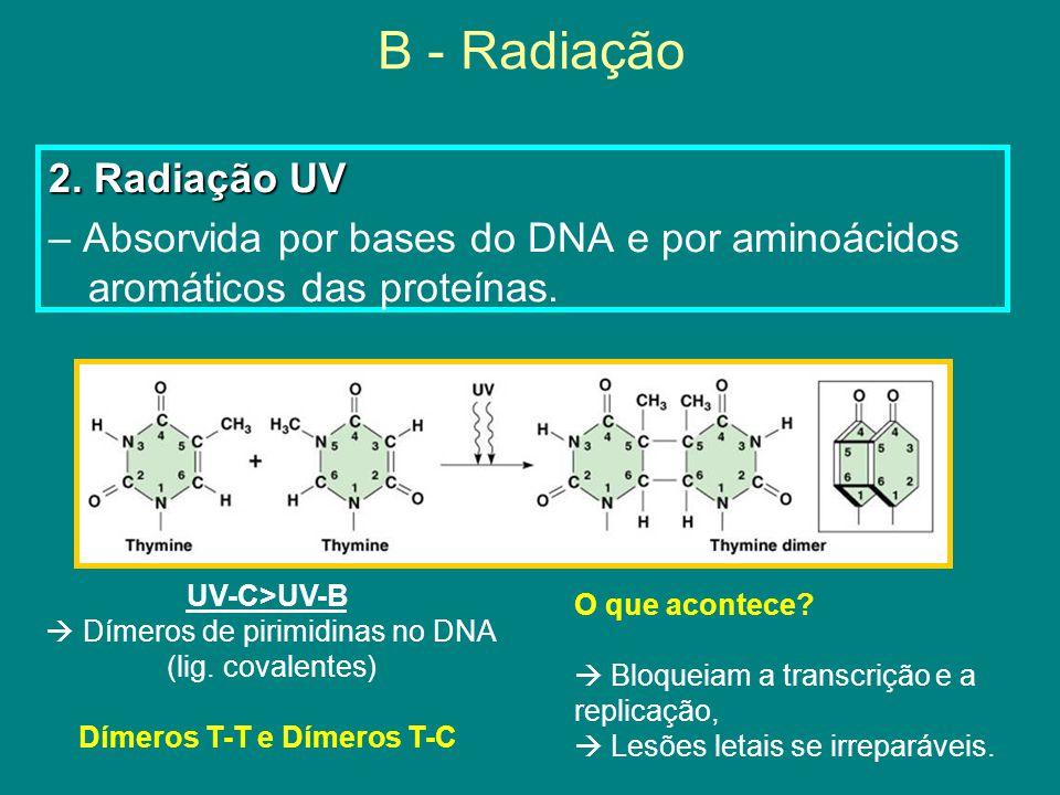 B - Radiação 2.