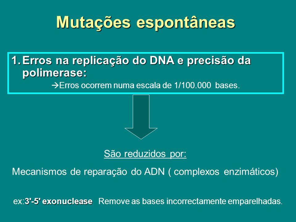 Mutações espontâneas Isómero estrutural ex.
